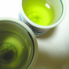 Green Tea and EGCG for your MS