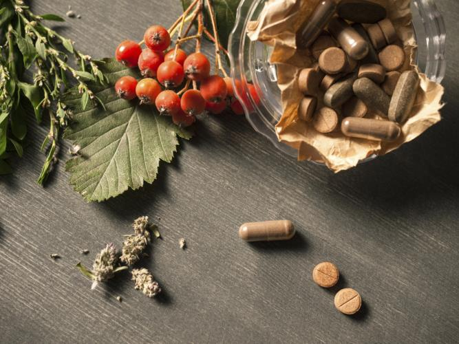 Supplements, Vitamins and Herbs for MS